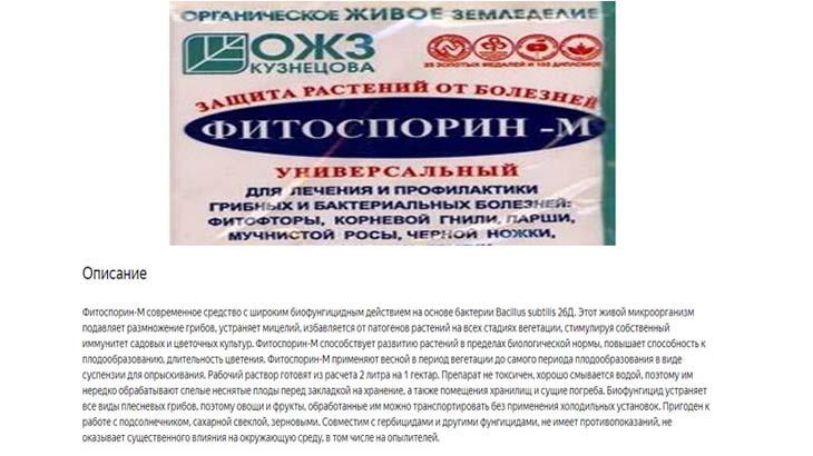 Фитоспорин-М от фитофтороза