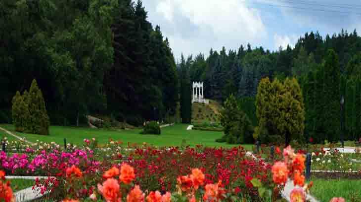 Долина роз в Кисловодске