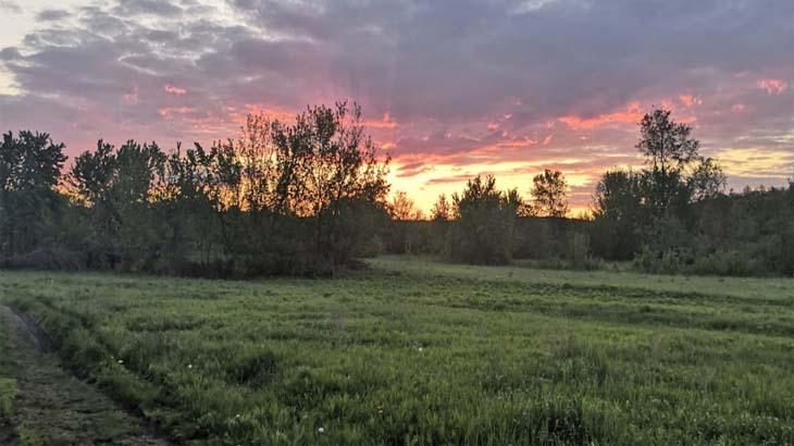 Красная вечерняя заря